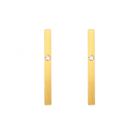 Golden Segment Earrings
